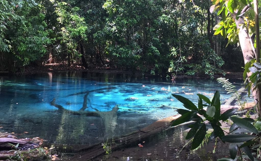 Emerald pool Krabi en Thaïlande