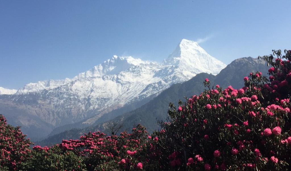 Vue de PoonHill - Annapurnas (Nepal)