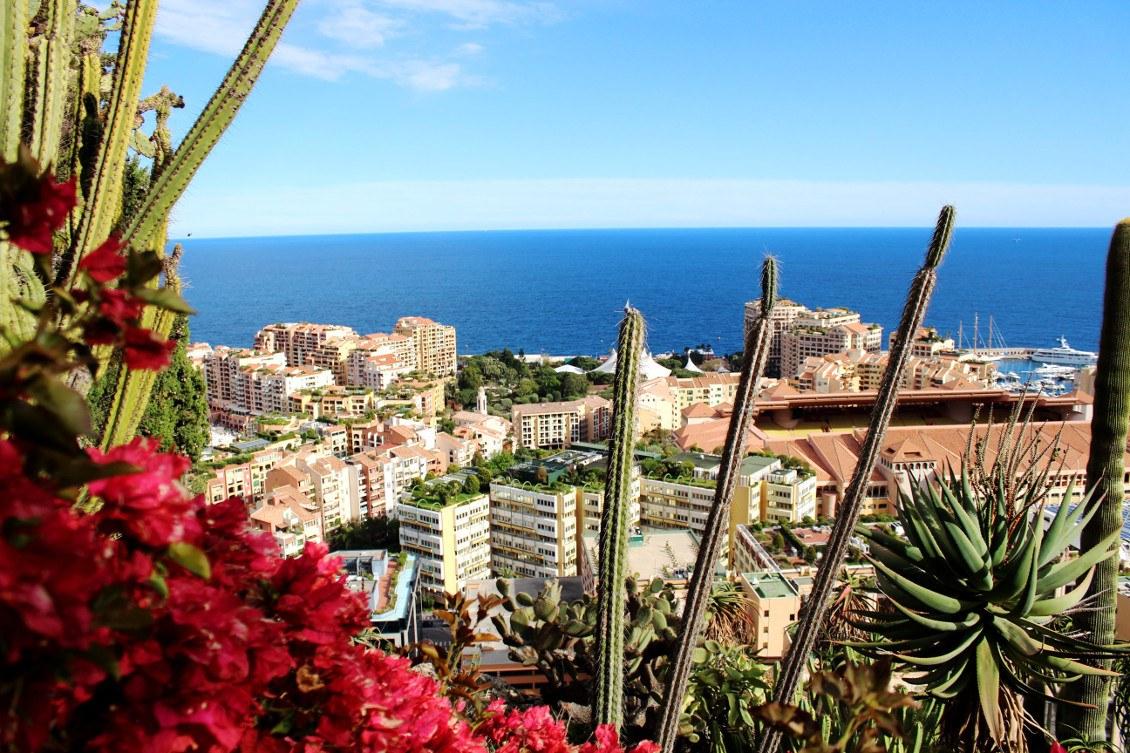 Monaco vu depuis le jardin exotique