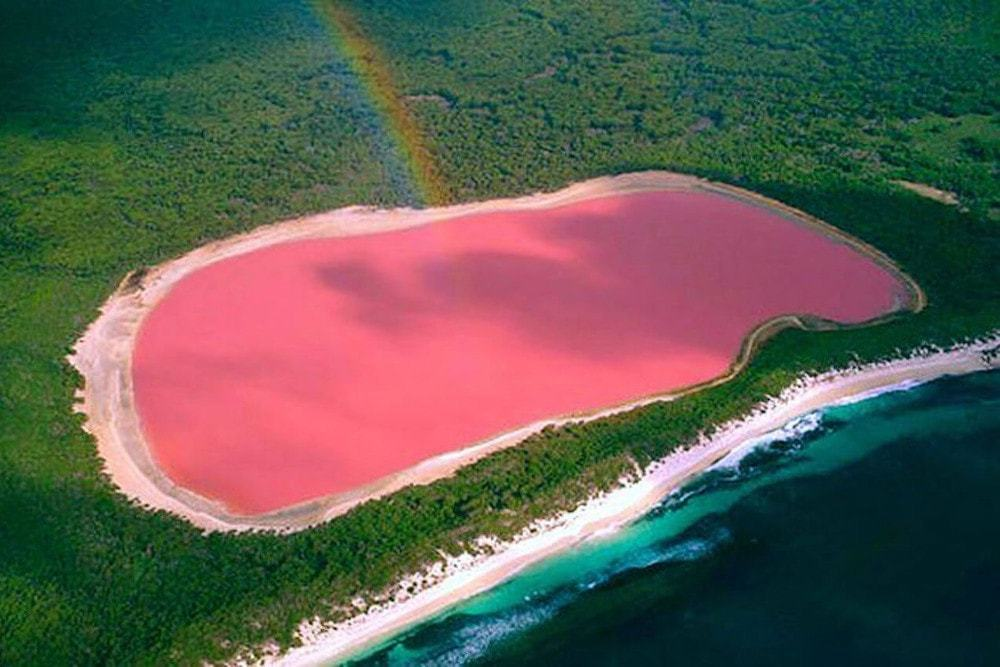 Survoler le lac rose