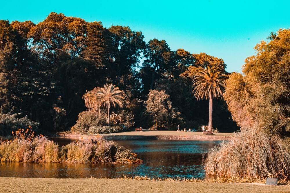 Visiter_Melbourne_royal_botanic_garden