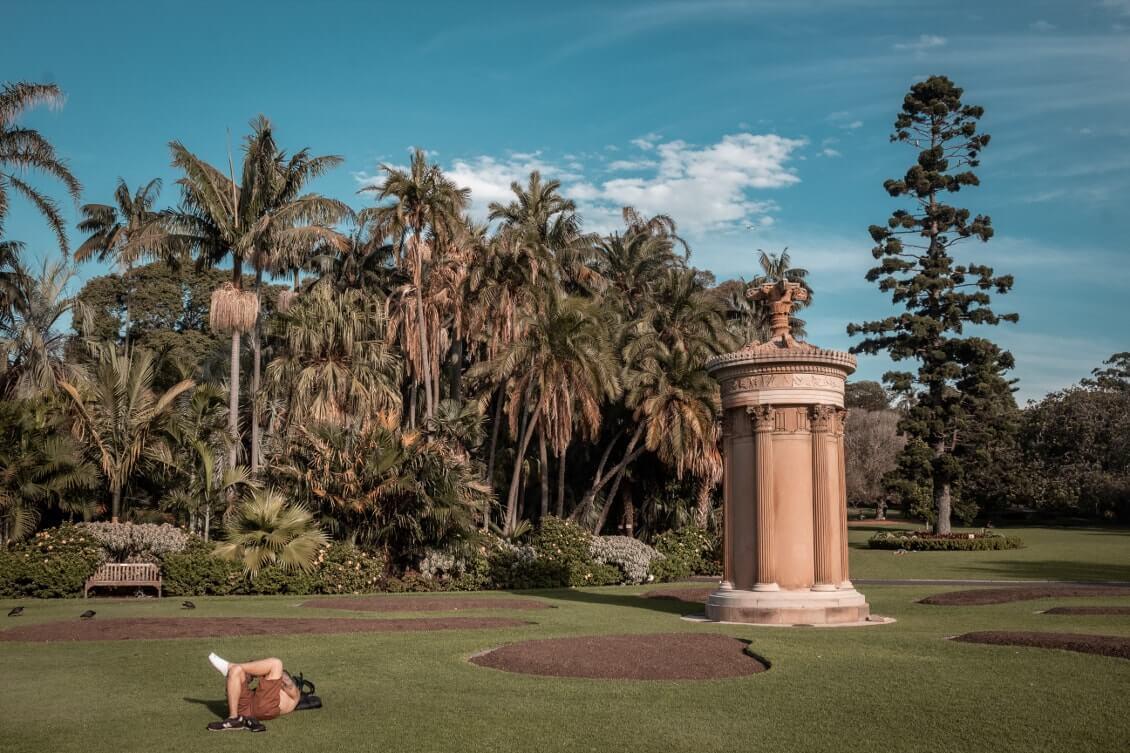 Visiter Sydney royal botanic garden