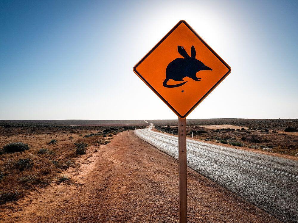 Panneaux d'Australie le bilby