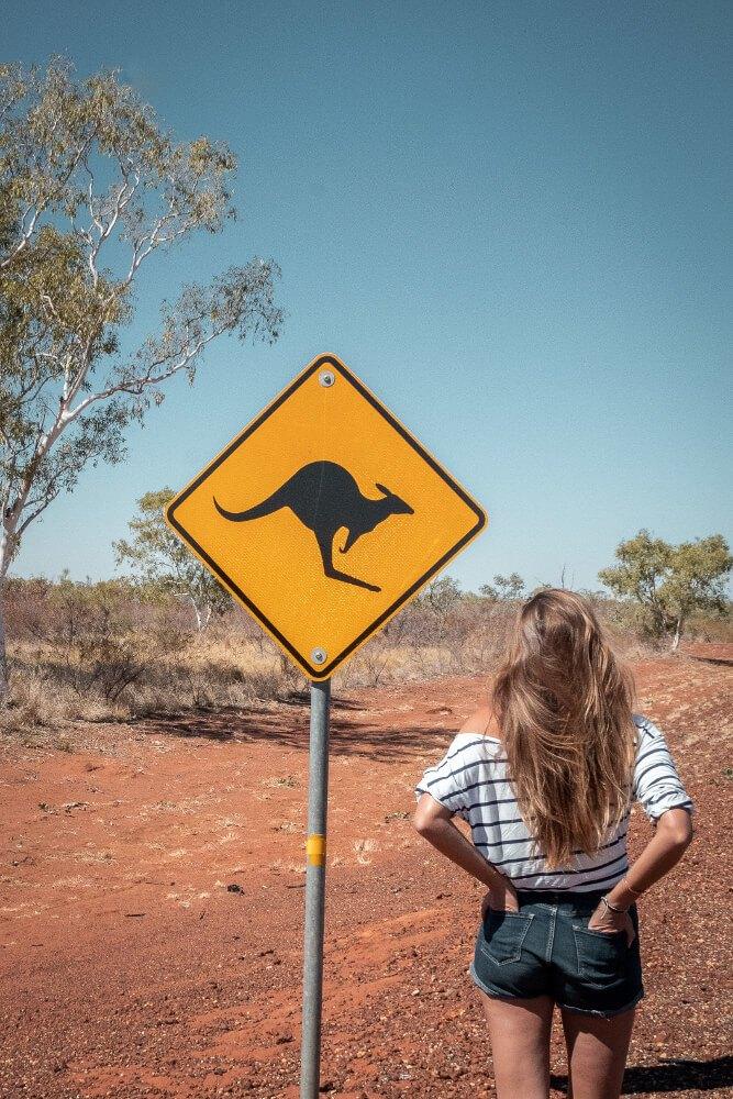 Panneaux d'Australie les kangourous