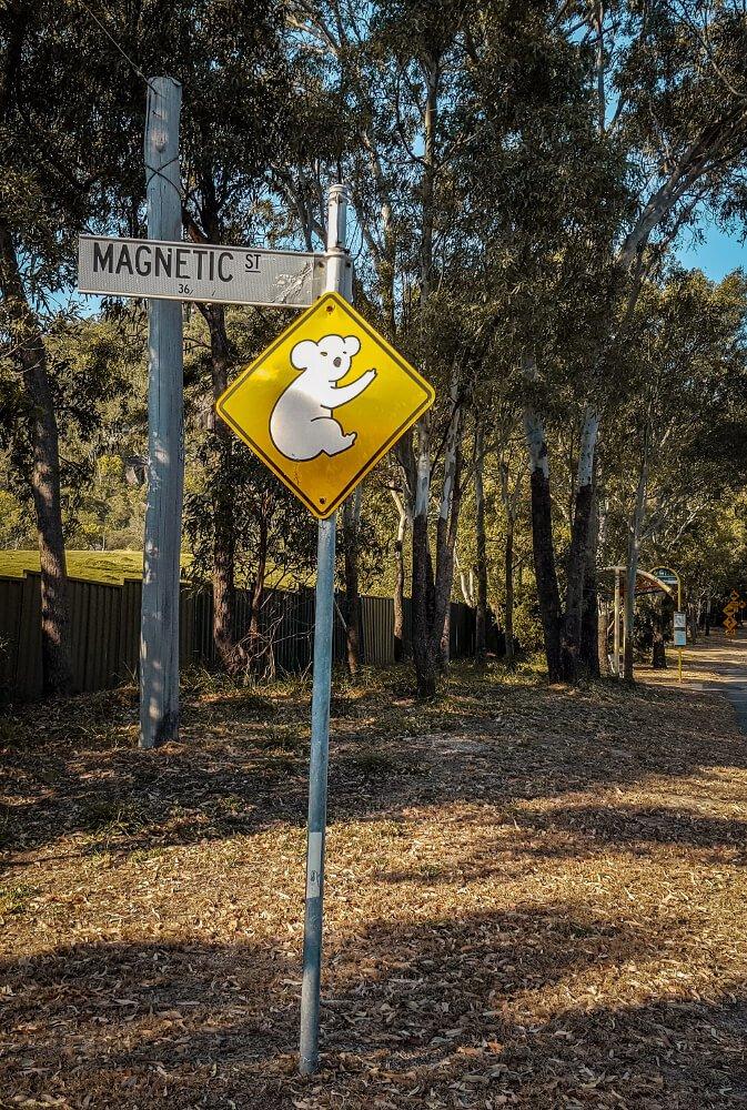Panneaux d'Australie les koalas