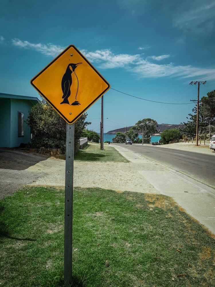 Panneaux d'Australie les pingouins