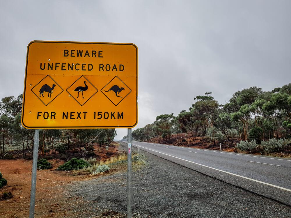 Panneaux d'Australie beware unfenced road