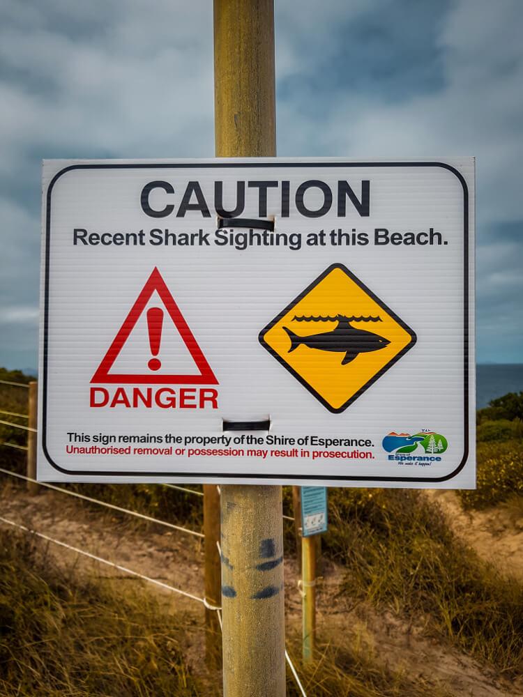 Panneaux d'Australie les requins