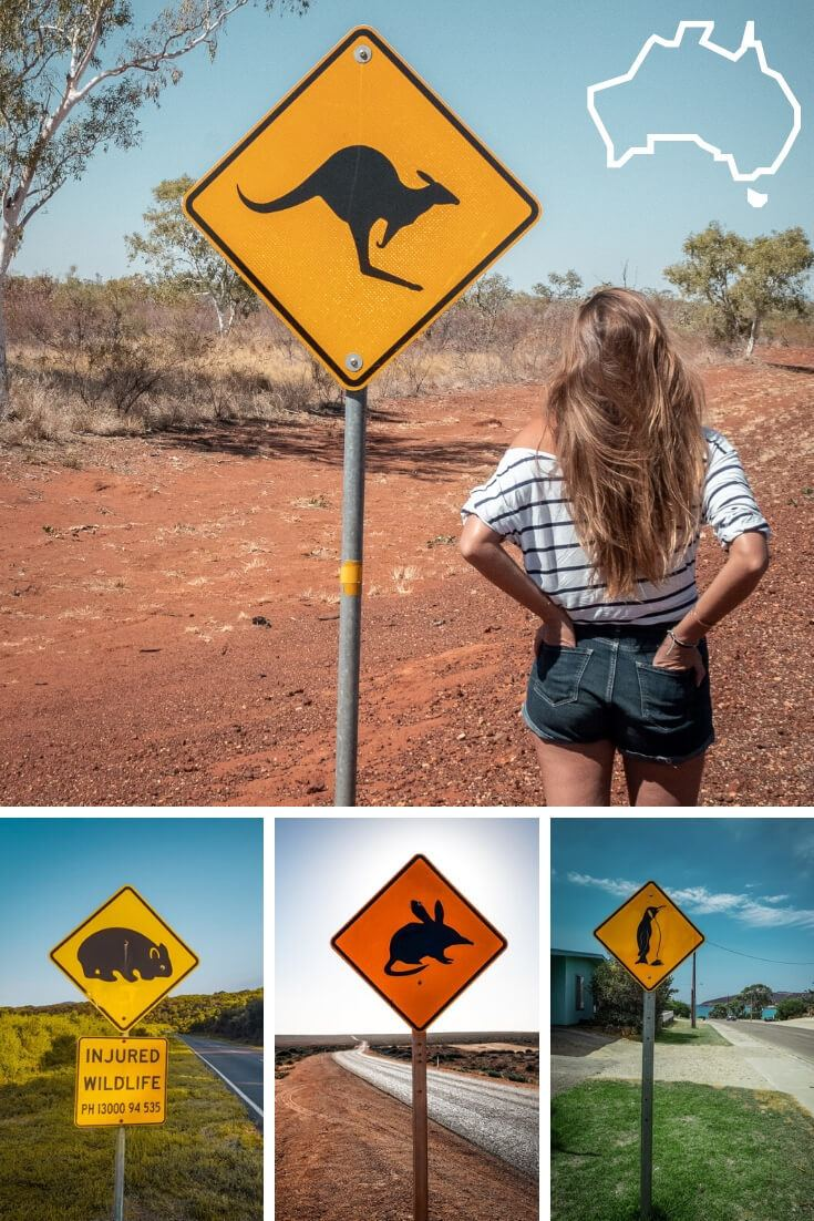 Panneaux d'Australie image pinterest du soleil dans les poches